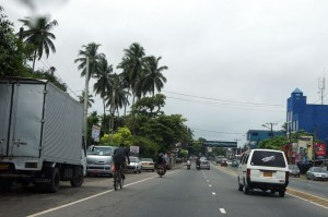 Silnice a okolo palmy